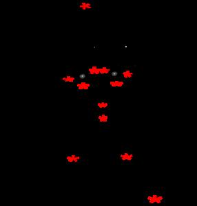 EFT meridiaan uiteinden